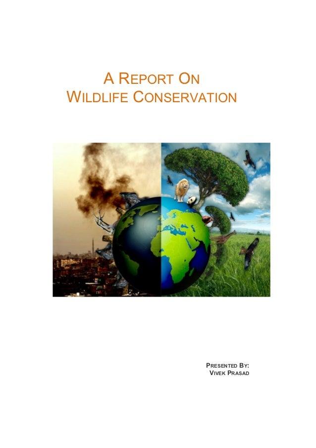 A REPORT ONWILDLIFE CONSERVATION                 PRESENTED BY:                  VIVEK PRASAD
