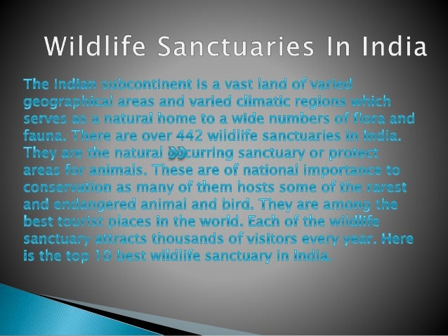 Top 10 Wildlife Sanctuaries in India Feel Wild Adventure in Your Life Wildlife Sanctuary is a natural shelter for wild spe...