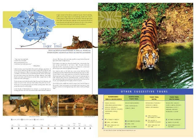 Wildlife Travel Brochure India