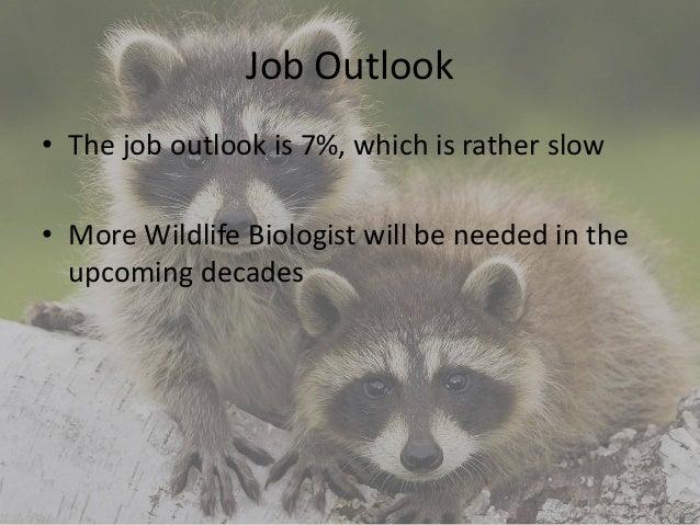 wildlife biologist college