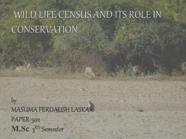 By conservation census is defined as the counting of all individuals belonging to the group of interest within a defines a...