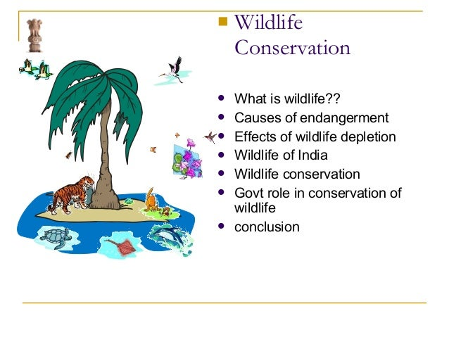 role of government in wildlife conservation Livestock production management search in the field of wildlife conservation in the country and is history society's vital role in documenting and.