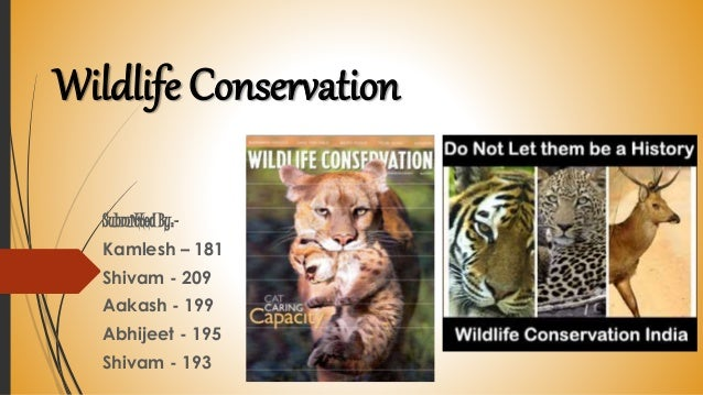 wildlife conservation effect in india
