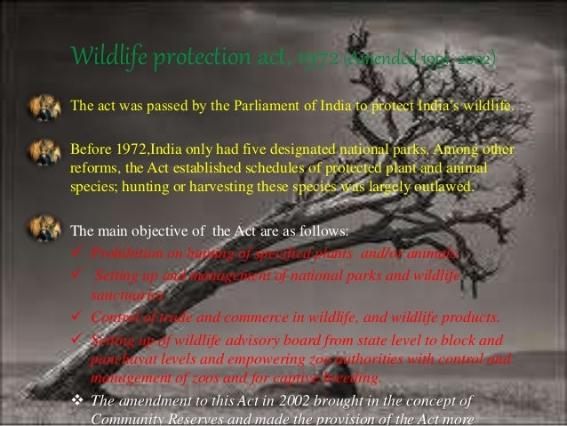 wildlife conservation in ppt  wildlife protection