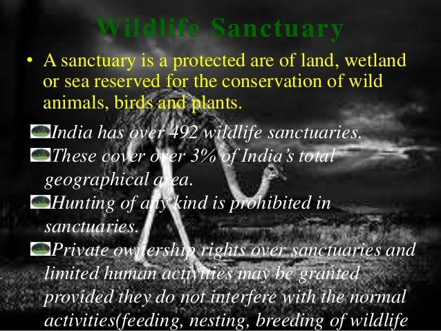 wildlife conservation in ppt  wildlife sanctuary