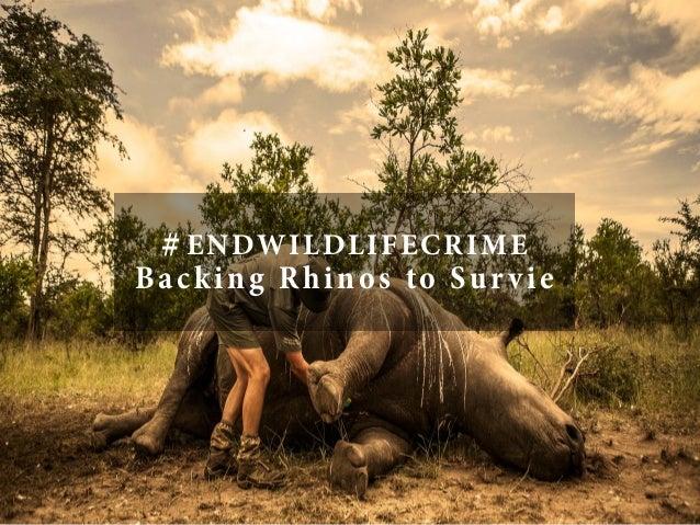 #ENDWILDLIFECRIME Backing Rhinos to Survie