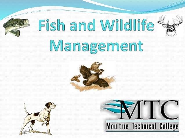 fish wildlife management power point