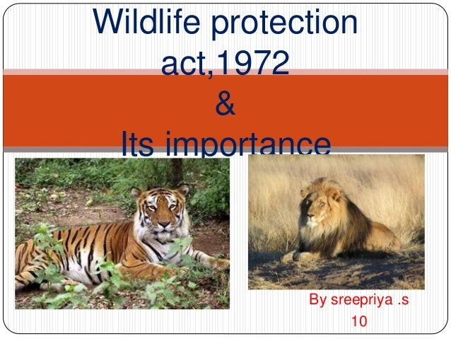 Wild life protection act