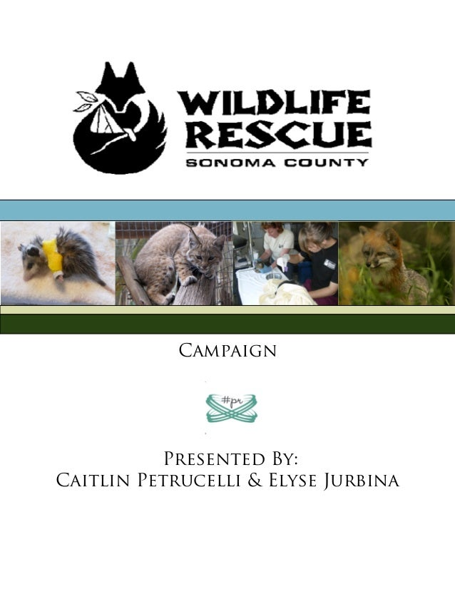 Campaign          Presented By:Caitlin Petrucelli & Elyse Jurbina