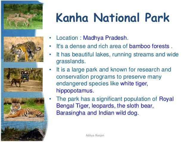 Wildlife Sanctuaries And National Park In India
