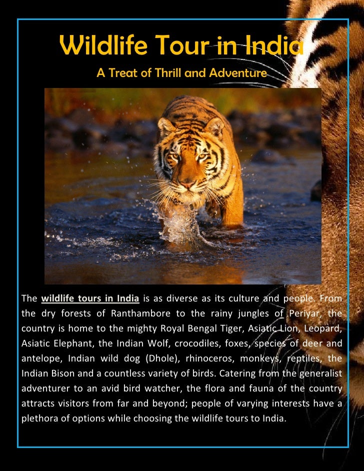 Wildlife Tour in India                 A Treat of Thrill and AdventureThe wildlife tours in India is as diverse as its cul...