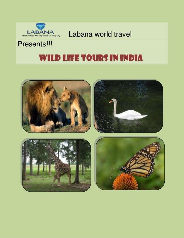 Labana world travel Presents!!! Wild life tours in India