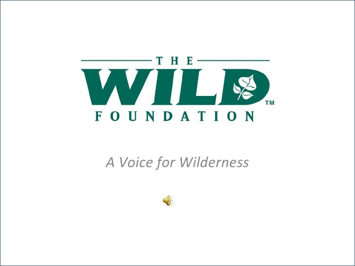 A Voice for Wilderness