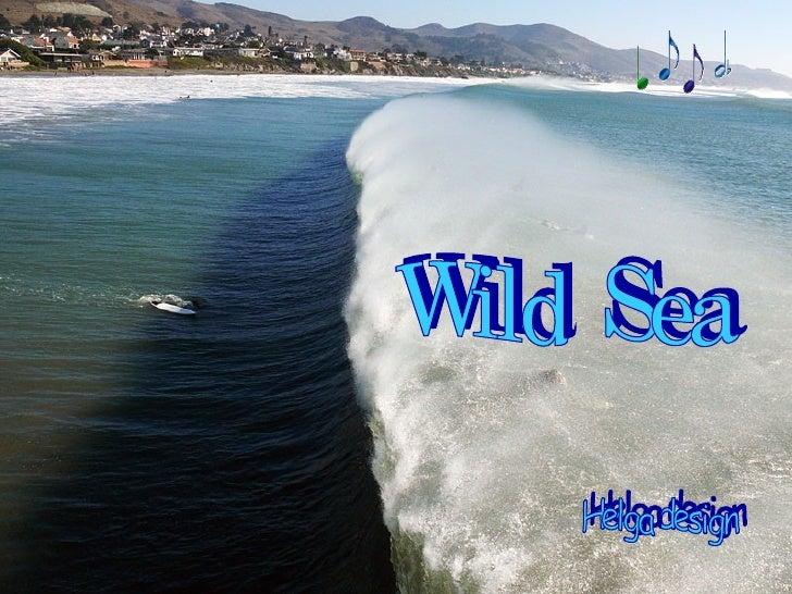 Helga design Wild  Sea