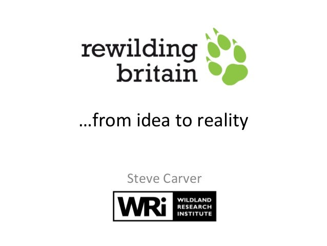 …from idea to reality Steve Carver