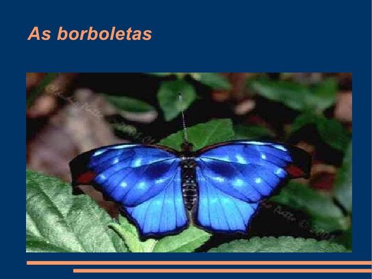 As borboletas