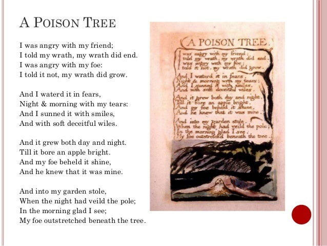 a poison tree poem commentary This resource is an a3 designed compartmentalised worksheet to help students analyse and revise the conflict anthology poem - a poison tree this resource includes a detailed answer sheet.