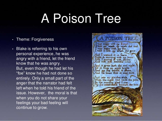 a review of william blakes story a poison tree A critical reading of a classic poem 'a poison tree', one of the most famous poems by william blake (1757-1827), was first published in blake's 1794 in summary, the speaker of the poem tells us that when he was angry with his friend he simply told his friend that he was annoyed, and that put an end to.