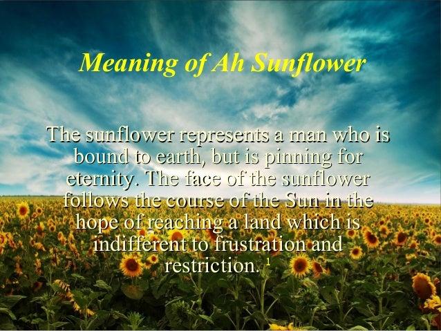william blake slideshow, Natural flower