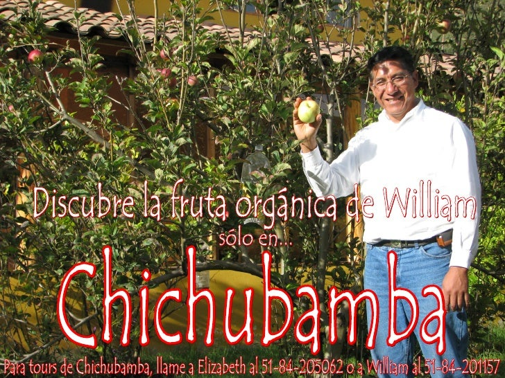 Chichubamba Poster- William (English)