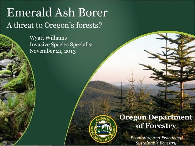 Emerald Ash Borer A threat to Oregon's forests? Wyatt Williams Invasive Species Specialist November 21, 2013  Oregon Depar...