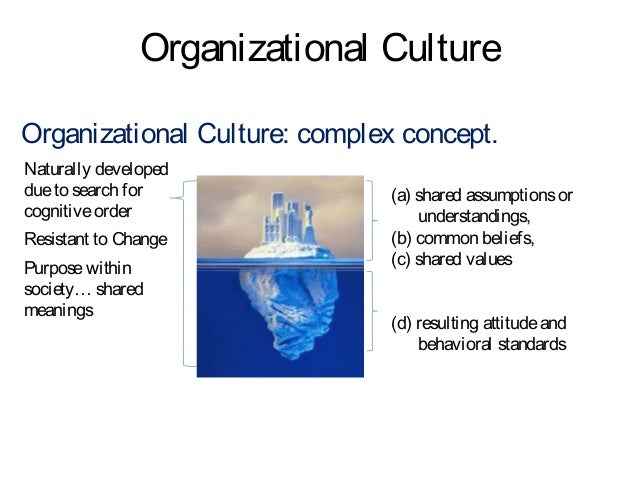 organizational culture analysis Organizational culture essay an organizational culture sums up a given set of meanings that are shared throughout the organization the shared meanings are often different, constituting the fundamental factors that differentiate one organization from another.