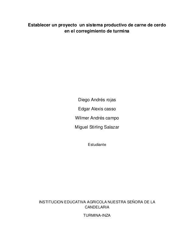 Establecer un proyecto un sistema productivo de carne de cerdo en el corregimiento de turmina  Diego Andrés rojas Edgar Al...