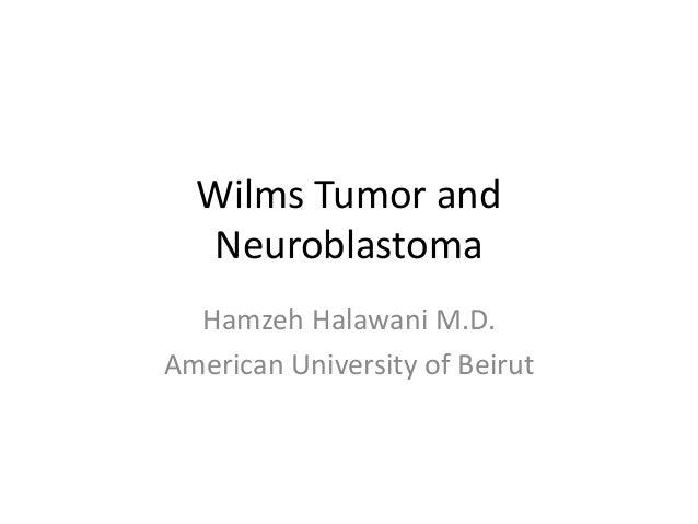 Wilms Tumor and Neuroblastoma Hamzeh Halawani M.D. American University of Beirut