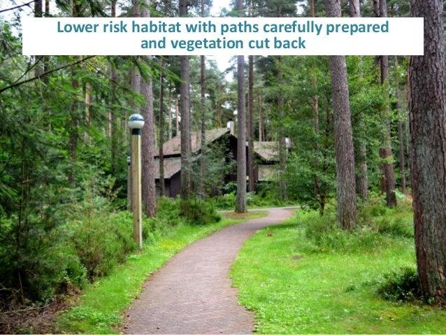 tick habitat