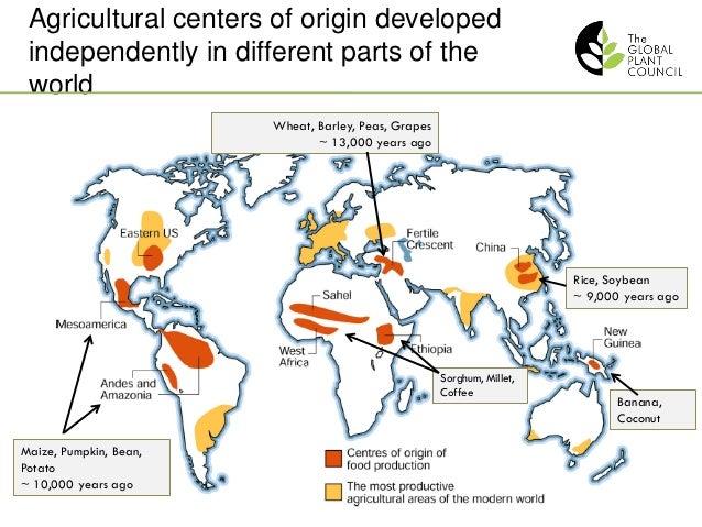 Wilhelm Gruissem Global Plant Council A Coalition Of