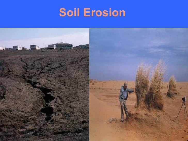 Image gallery of causes of soil erosion wind sciox Images
