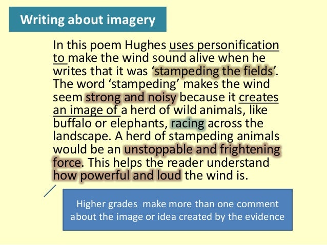 "analysis of the poem wind by ted hughes Poem of the month / the pack admires potm: ted hughes' ""the horses."