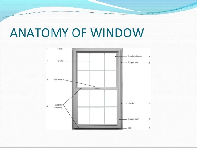 Window And Window Treatment