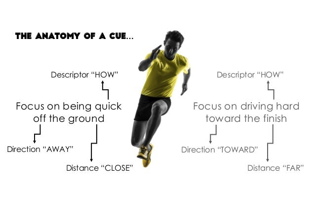 "The anatomy of a cue… Focus on being quick off the ground Descriptor ""HOW"" Direction ""AWAY"" Distance ""CLOSE"" Focus on driv..."