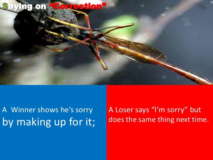 """Saying on """"Correction""""A Winner shows he's sorry   A Loser says """"I'm sorry"""" butby making up for it;        does the same th..."""