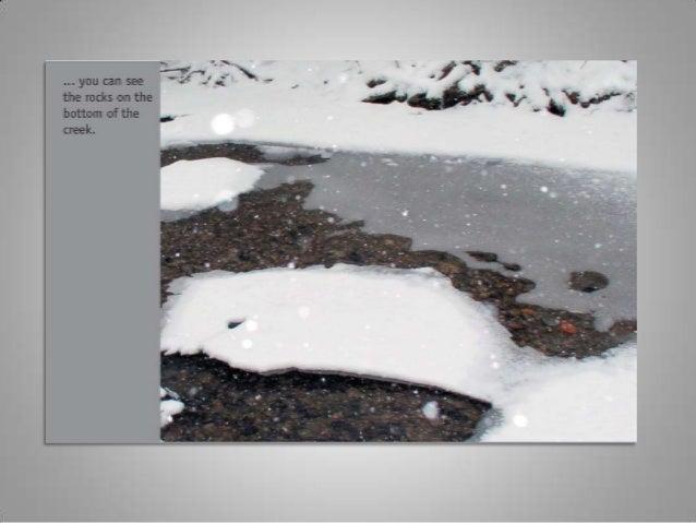 Winter walk2005