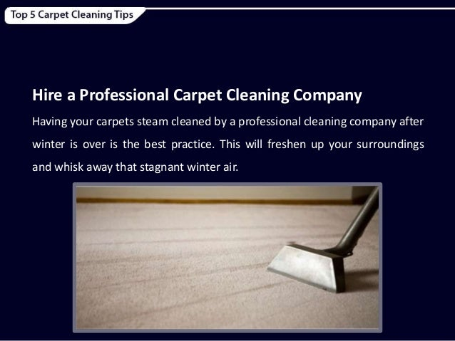 8 hire a carpet cleaning