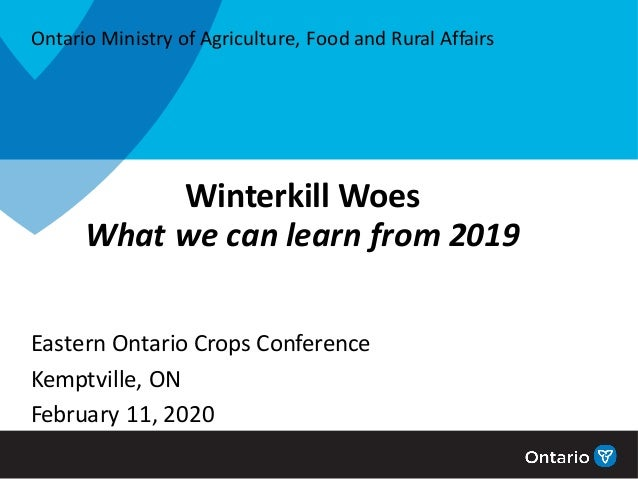 Winterkill Woes What we can learn from 2019 Eastern Ontario Crops Conference Kemptville, ON February 11, 2020 Ontario Mini...