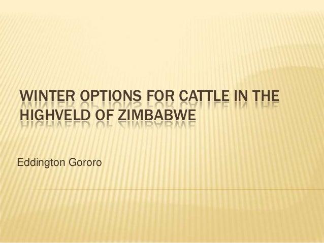 WINTER OPTIONS FOR CATTLE IN THE HIGHVELD OF ZIMBABWE Eddington Gororo