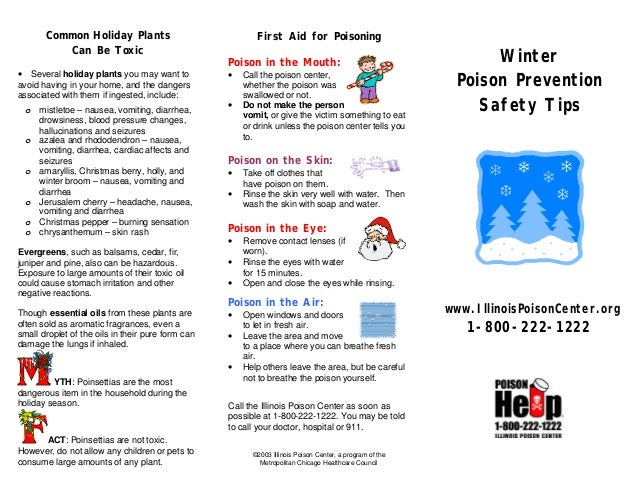 winter poison prevention safety tips. Black Bedroom Furniture Sets. Home Design Ideas