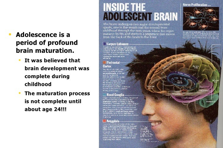 effects of drugs on the brain essay When drugs enter the brain there is a lot of information about the health effects of drugs on nida's teen site here: brain and addiction.