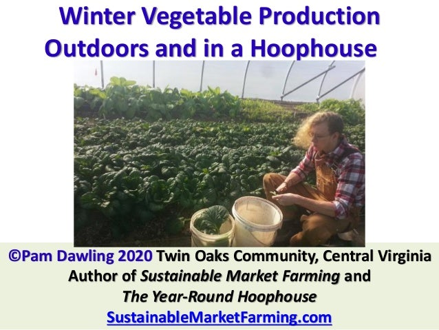 Winter Vegetable Production Outdoors and in a Hoophouse ©Pam Dawling 2020 Twin Oaks Community, Central Virginia Author of ...