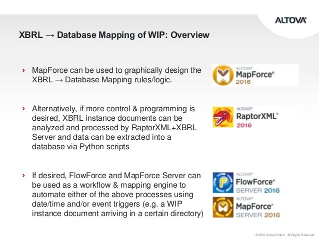 Database mapping of XBRL instance documents from the WIP