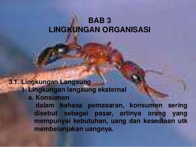 BAB 3 LINGKUNGAN ORGANISASI 3.1. Lingkungan Langsung 1. Lingkungan langsung eksternal a. Konsumen dalam bahasa pemasaran, ...