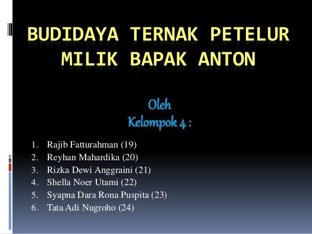 BUDIDAYA TERNAK PETELUR MILIK BAPAK ANTON Oleh Kelompok 4 : 1. Rajib Fatturahman (19) 2. Reyhan Mahardika (20) 3. Rizka De...