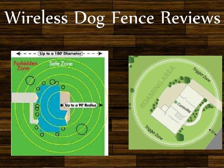 Wireless Pet Fence Petsafe Stubborn Dog U2013 Best