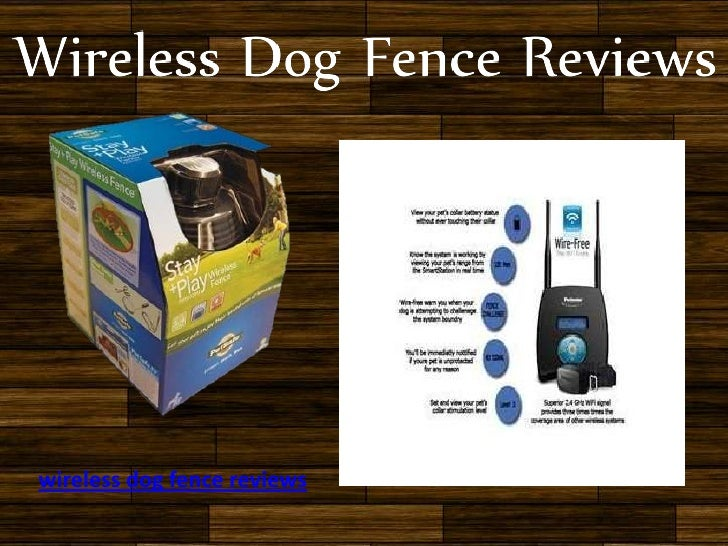 wireless dog fence reviews 5