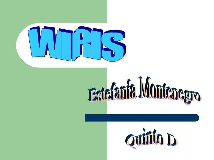WIRIS Estefanía Montenegro Quinto D