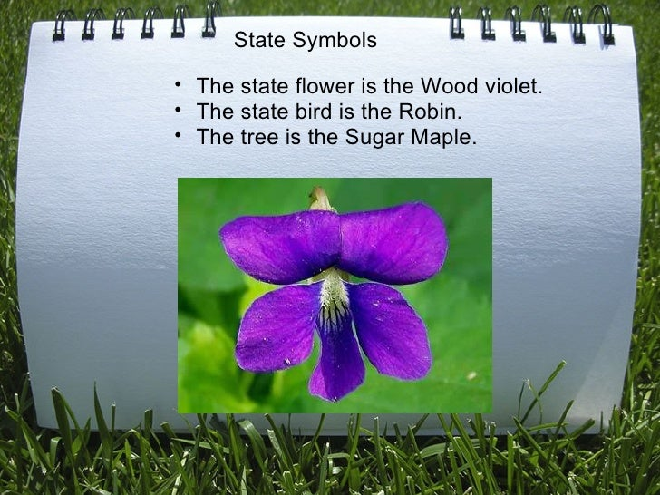 <ul><ul><li>The state flower is the Wood violet. </li></ul></ul><ul><ul><li>The state bird is the Robin. </li></ul></ul>...