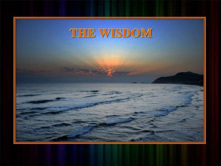 zz<br />THE WISDOM<br />